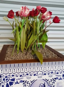 Welcoming tulips at Schiphol airport