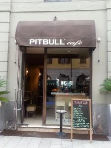 pitbull-cafe